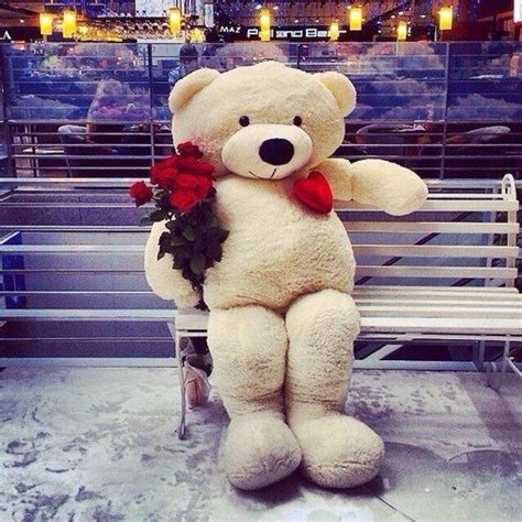 big teddy valentines day 17 best images about s day on