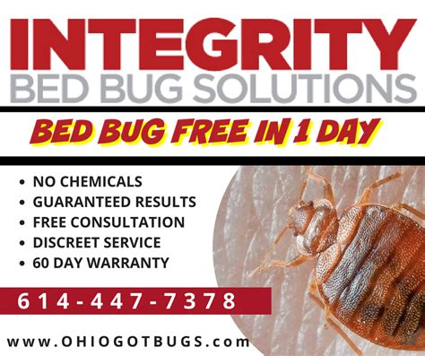 bed bug solution integrity bed bug solutions columbus ohio oh