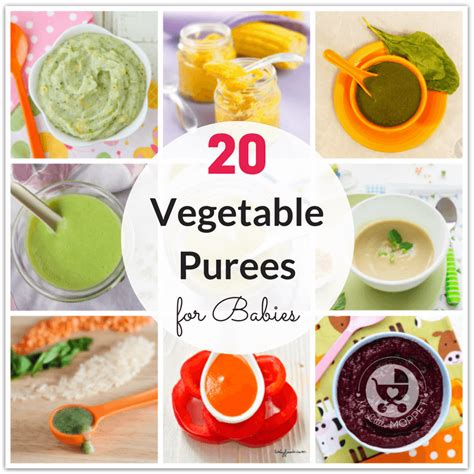 stage 1 vegetables 20 and easy vegetable purees for babies