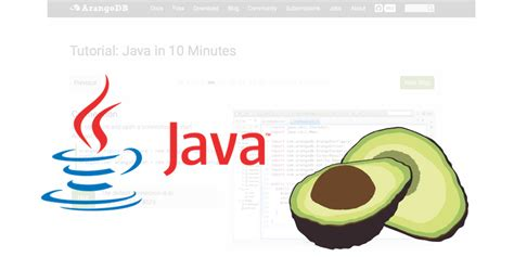 java pattern usage arangodb tutorials