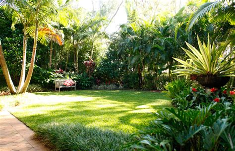tropical backyard ideas tropical landscaping ideas services landscape design