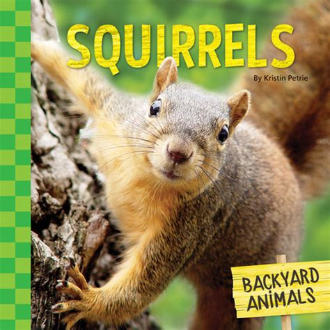 Common Backyard Animals by Reference Backyard Animals