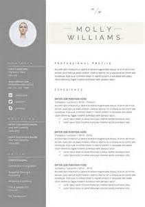 Curriculum Vitae Cover Letter by 17 Meilleures Id 233 Es 224 Propos De Mod 232 Les De Cv Sur