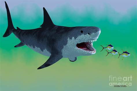 Shark Duvet Cover Megalodon Shark Attack Painting By Corey Ford