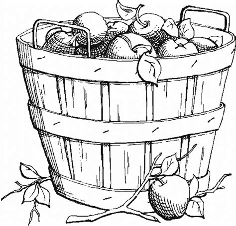 fall apples coloring pages coloring an apple basket picture