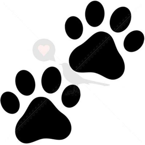 100 bear paw print tattoo inkspot tattooshop big