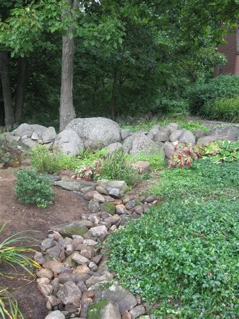 dry river bed landscaping dry river bed garden pinterest