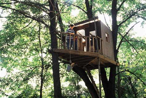 treehouse for backyard how to build a treehouse in the backyard
