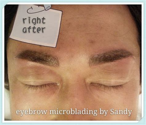 eyebrow tattoo for men eyebrow microblading for eyebrow microblading