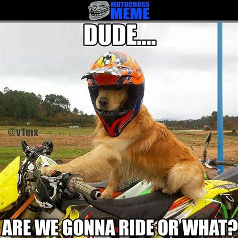 can you ride a motocross bike on the road 732 best images about dirt bike on pinterest riding