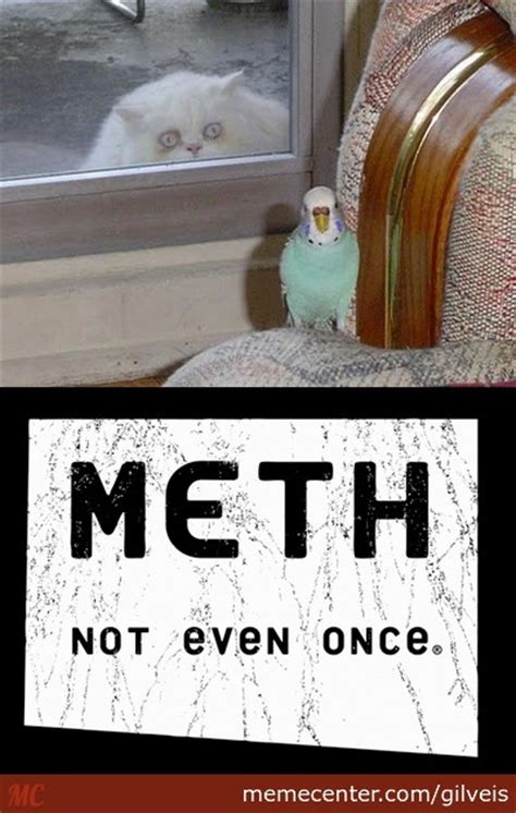 Meth Not Even Once Meme - meth not even once by gilveis meme center