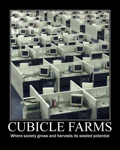 Cubicle Meme - cubicle farms meme guy