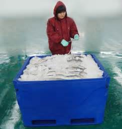 Kitchen Cabinet Design Software Free Plastic Fish Box With Forklift Slots Frozen Fish Transport