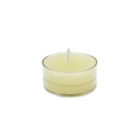 zest candle 1 5 in ivory tealight candles 50 pack ctz 005 the home depot