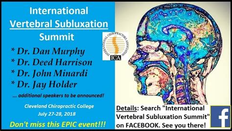 chapter 18 basic spinal subluxation considerations chiro ica international vertebral subluxation summit