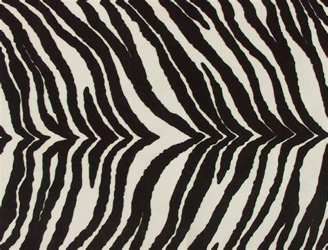 Animal Print Zebra | www.imgkid.com - The Image Kid Has It!