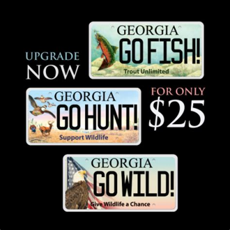 columbia county ga boat registration georgia motor vehicle registration renewal impremedia net
