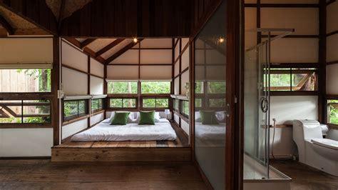 backyard jungle stunning eco friendly homes engulfed