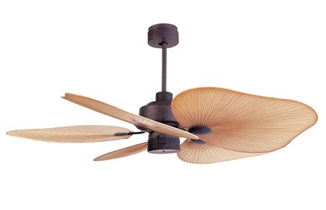tropical ceiling fans with light baby exit