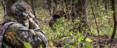 printable turkey hunt the printable turkey hunting gear checklist