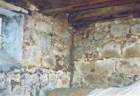 sauna im keller feuchtigkeit bilder zu feuchtigkeitssch 228 den und altbausanierung