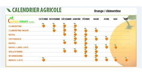Calendrier De Production Calendrier De Production Agrumes Fruits Citrofruit