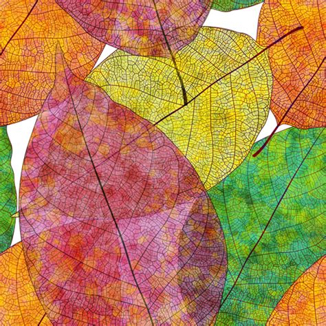 seamless pattern leaves beautiful autumn leaves vector seamless pattern 01