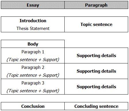 parts of car essay college paper academic service