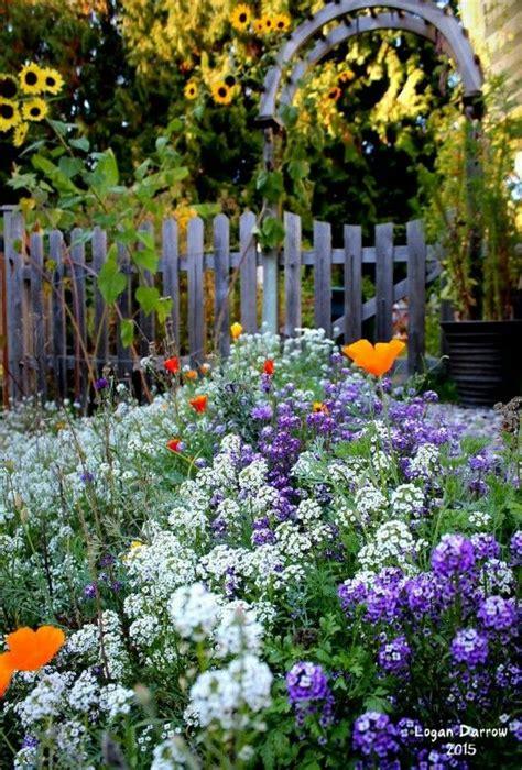 25 best autumn garden images on autumn garden