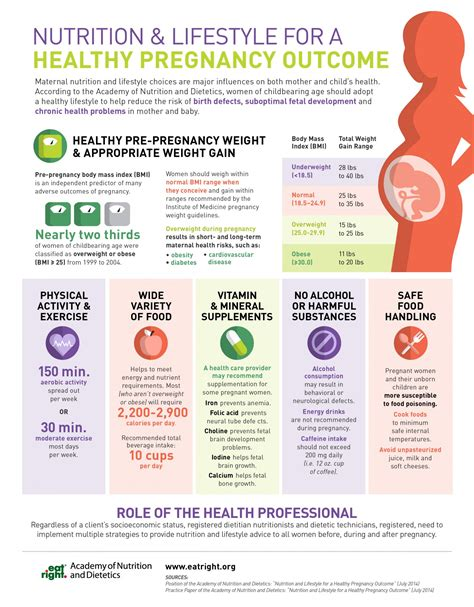 7 Tips On A Healthy Pregnancy by Nutrition Lifestyle For A Healthy Pregnancy Outcome