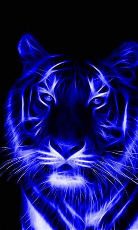 tiger wallpaper  android gallery