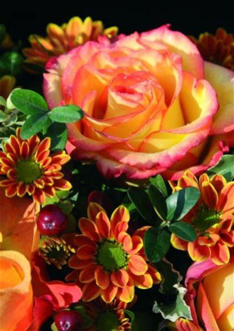 Wie Lange Halten Schnittblumen by Schnittblumen Frisch Halten