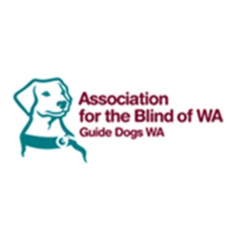 Association Of The Blind supporters affiliations lions eye institute