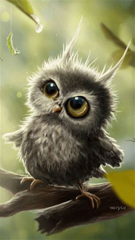 best 25 baby owls ideas on pinterest cute baby owl