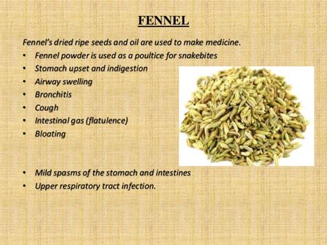 13 Medicinal Herbs And Spices by Medicinal Uses Of Spices