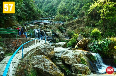 rock garden darjeeling rock garden darjeeling darjeeling photo by soumita
