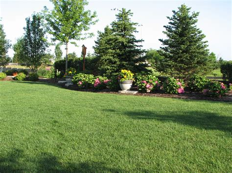 backyard landscaping for privacy existing home landscaping elemental landscapes ltd