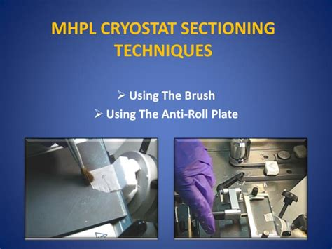 sectioning techniques ppt tissue freezing methods for cryostat sectioning
