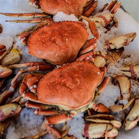 Pdf Where To Buy Fresh Crab by Dungeness Crab Whole S Fish Spot