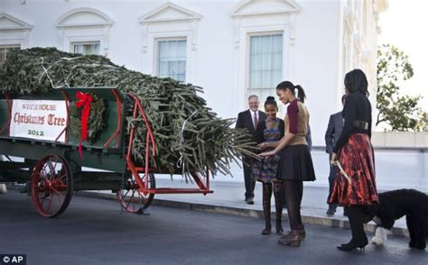 and malia rooms in the white house a white house malia and obama help welcome tree daily mail