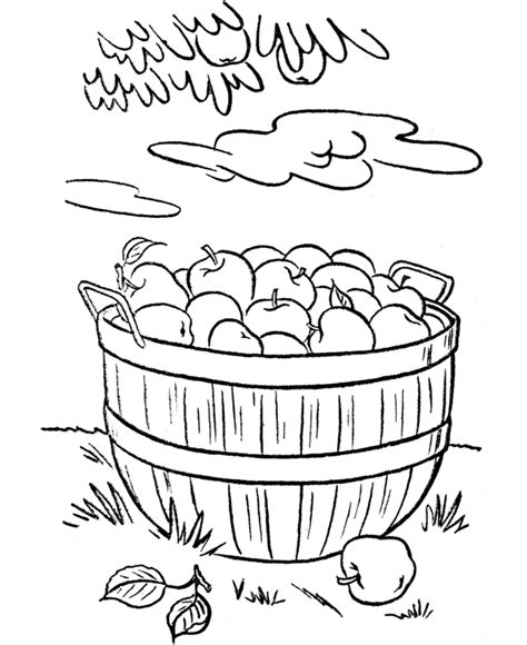 apple harvest coloring pages fall harvest coloring pages thanksgiving dinner coloring