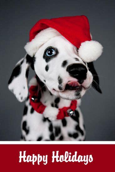 images  santa baby  pinterest santa baby christmas baby  merry christmas