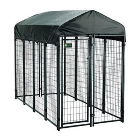 kennels home depot american kennel club 4 ft x 8 ft x 6 ft uptown premium steel boxed kennel kit