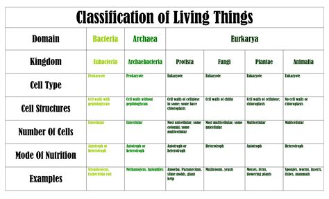 classification chart 4 best images of animal classification system chart