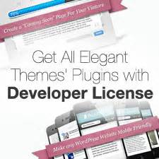 elegant themes mobile plugin 5 great wordpress redirect plugins