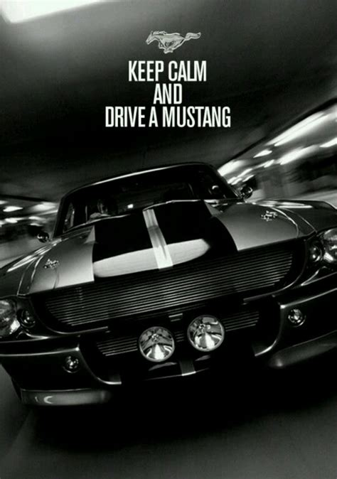 drive a mustang keep calm and drive a mustang wallpaper