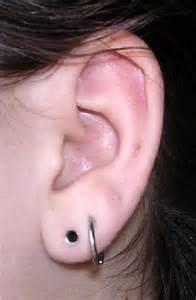 top 10 different ear piercing types listden