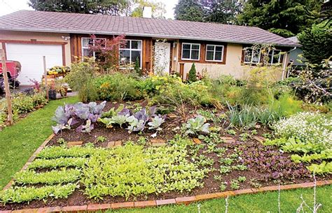 backyard gardens illegal 233 best images about raised beds retainer gardens front