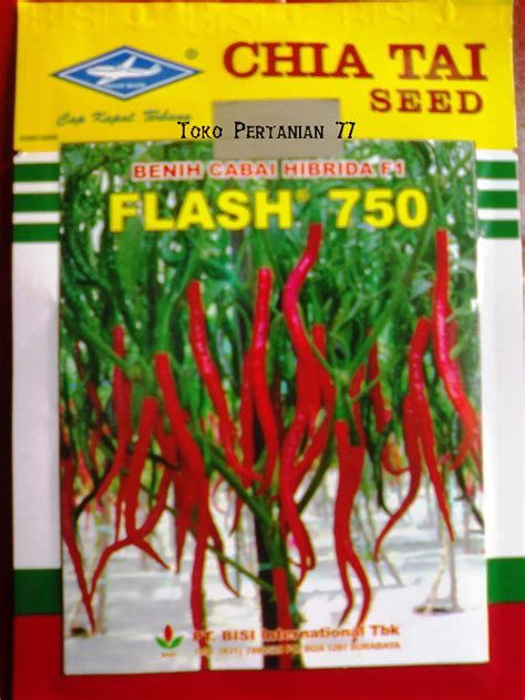 Jual Bibit Cabe Keriting kios pertanian 77 jual benih cabe keriting flash 750 cap