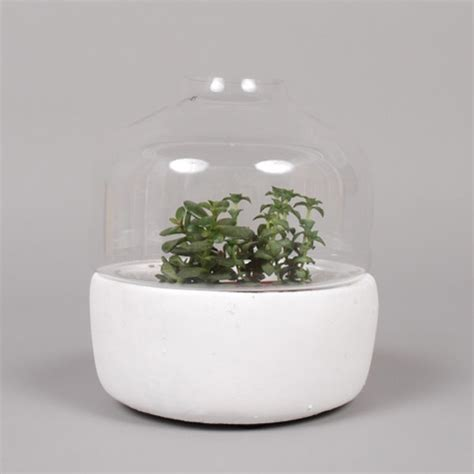 Serax Vases Uk by 10 Of The Best Plant Pots Design